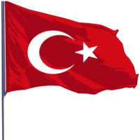 Türk Bayrağı (2000x3000 cm)