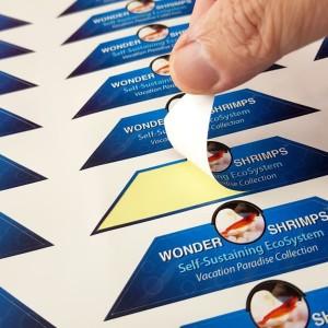 Baskes Folyo Etiket 5.2 × 8.4 cm (250 Adet) (Özel Kesim)                                                         baskes,                                 online matbaa,                                 etiket baskı,                                 stickers online,                                 sticker baskı,                                 folyo baskı,                                 sticker,                                etiket